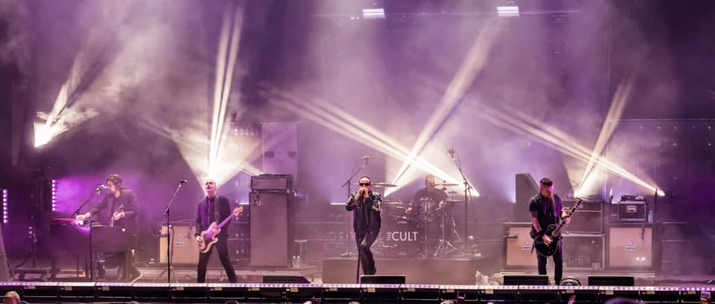 The Cult Pain In the Grass 2018